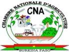 Chambre Nationale d'Afrique